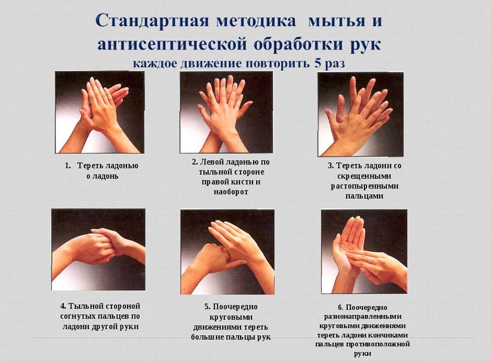Алгоритм мытья рук в медицине в картинках новый